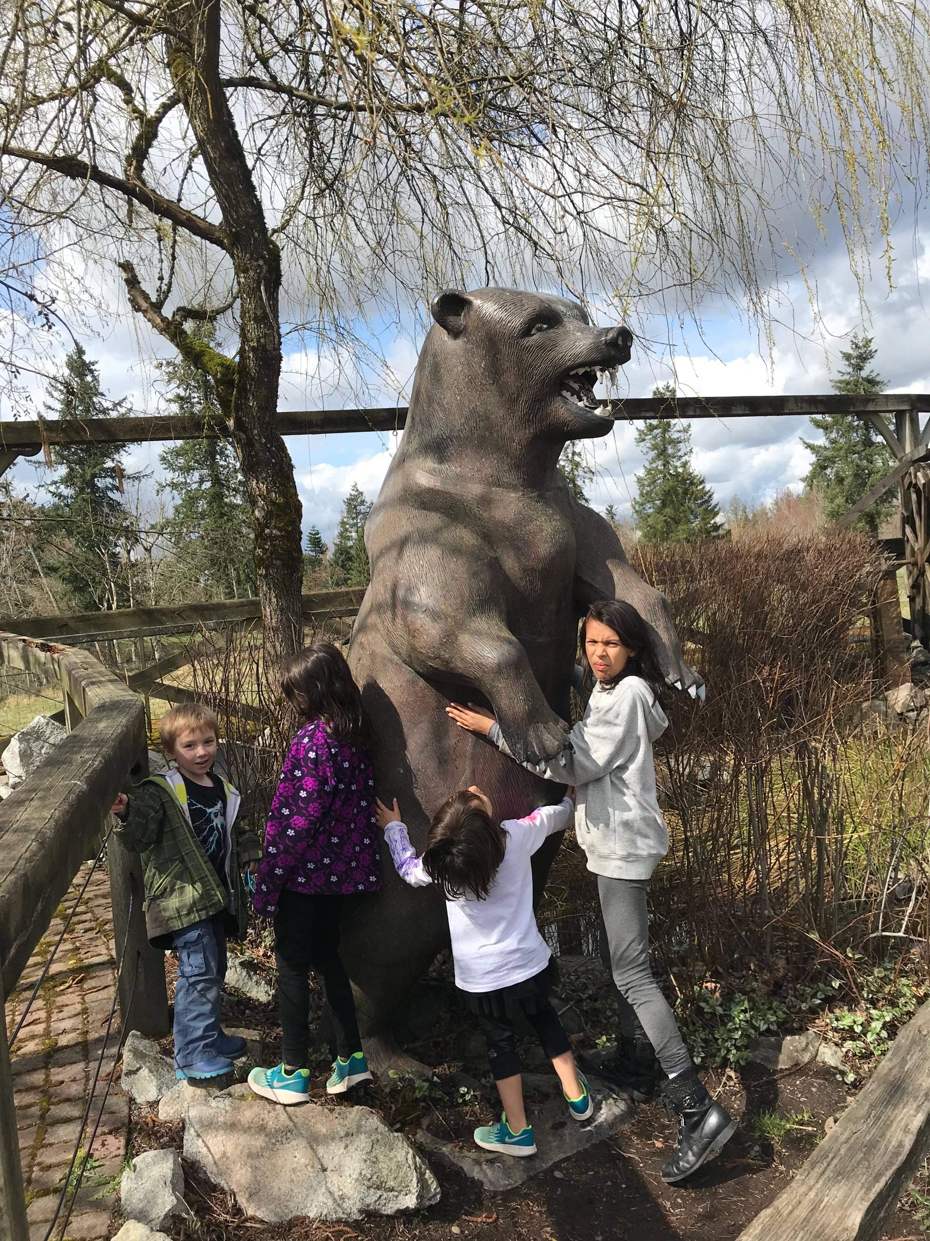proper bear safety
