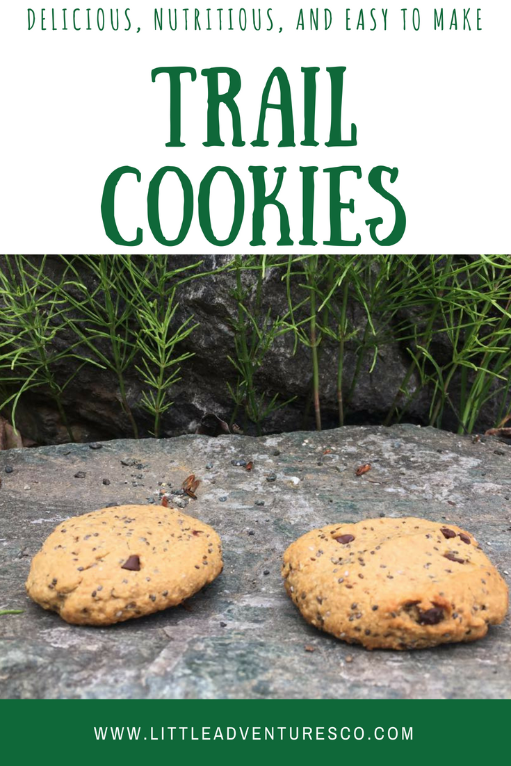 Trail cookie recipe! #healthysnacks #healthycookie #yummycookie