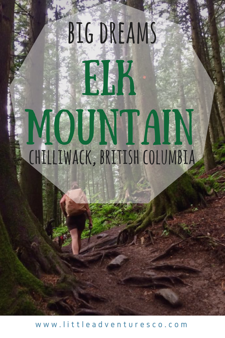 Elk mountain trail