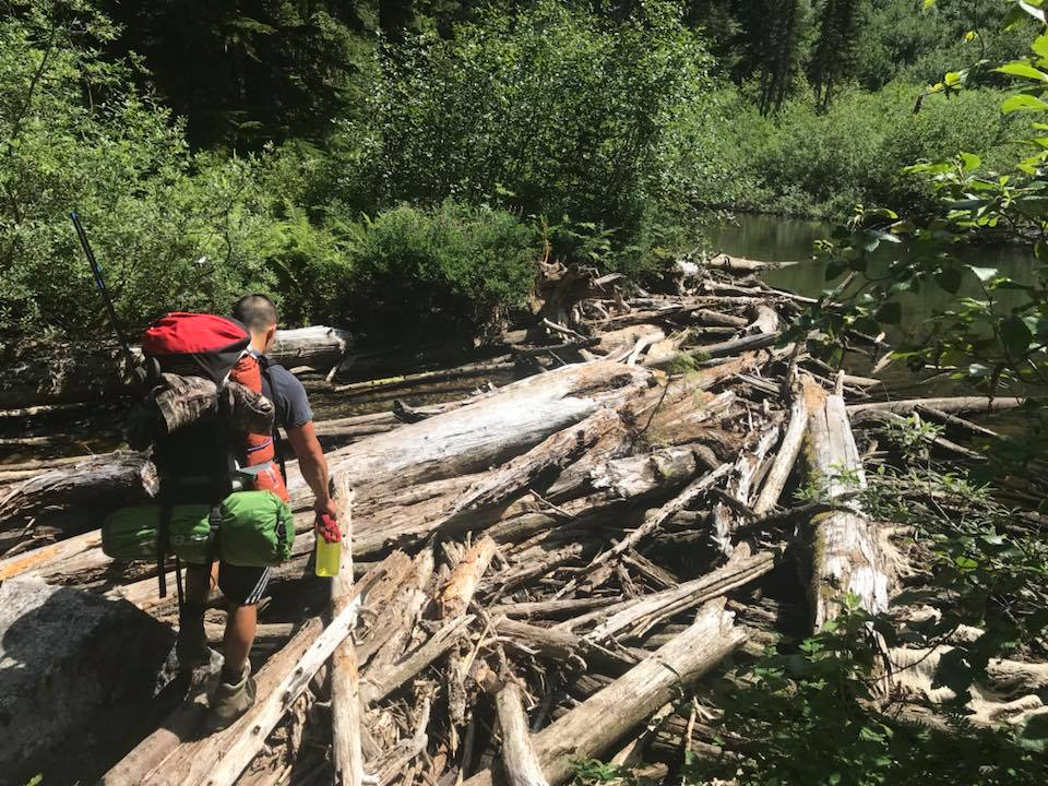 log jam at eaton lake