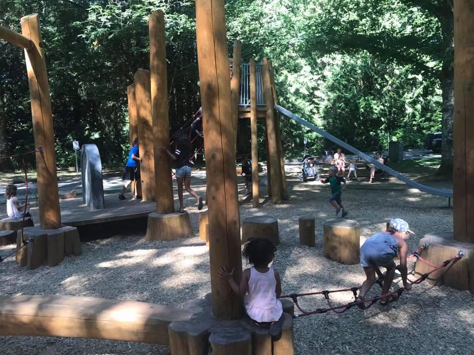 natural playground williams park