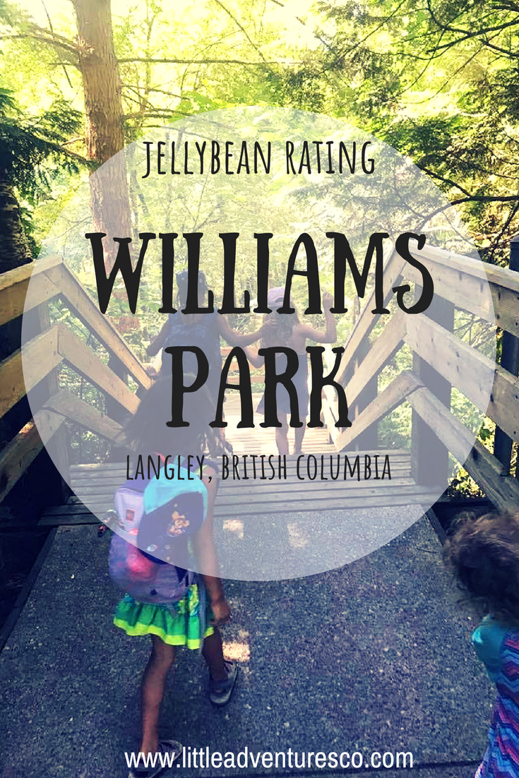 If you're looking for a spot with a great playground, forest, and swimming hole William's Park in Langley, British Columbia is your place to go!