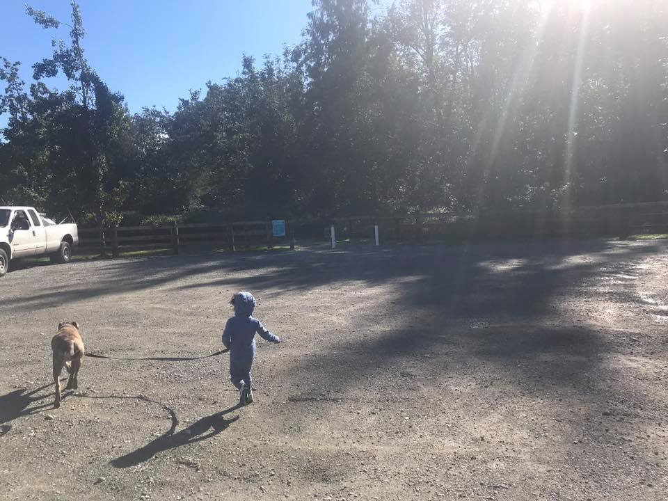 james taylor park abbotsford