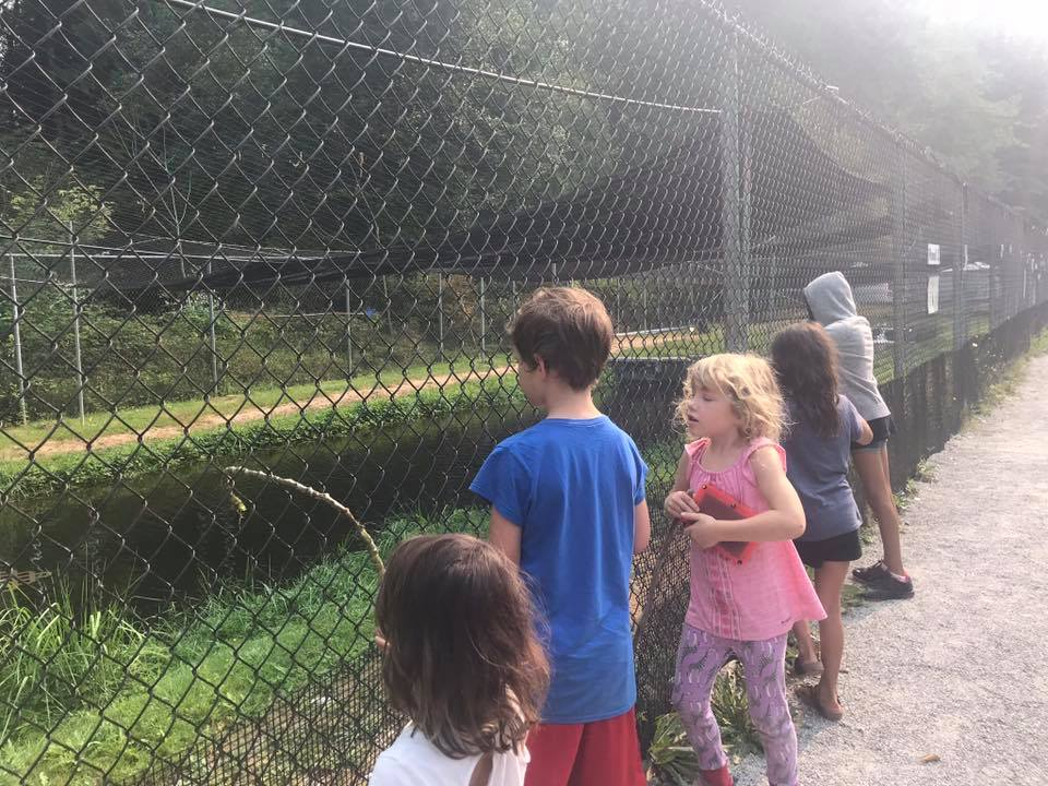 fish hatchery at kanaka creek