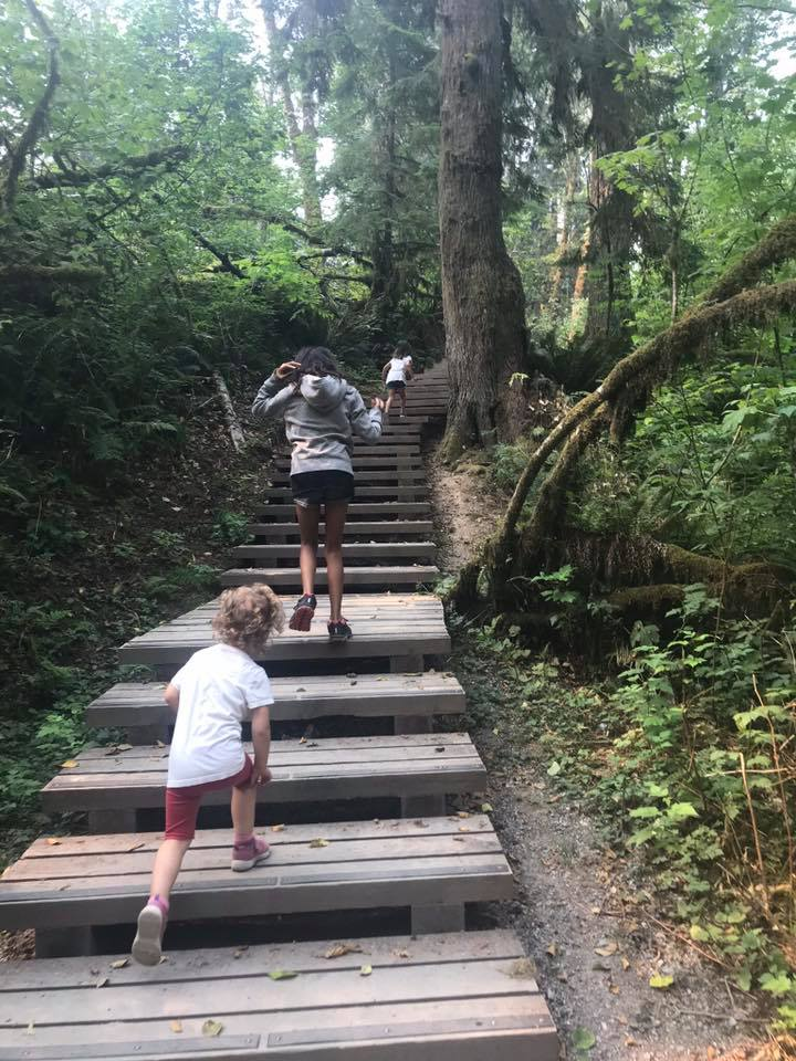 stairs on the kanaka creek trail