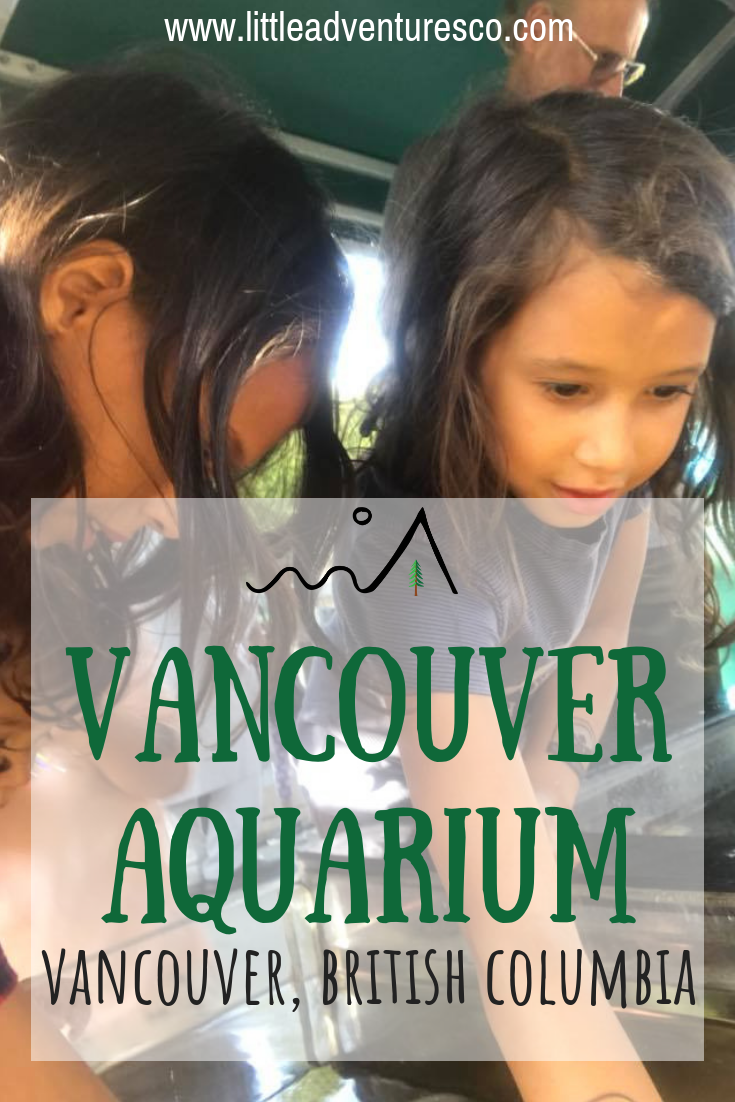 The Vancouver Aquarium will captivate your kids, no matter what age, for hours. It will leave a lasting impression and be a favorite memory!