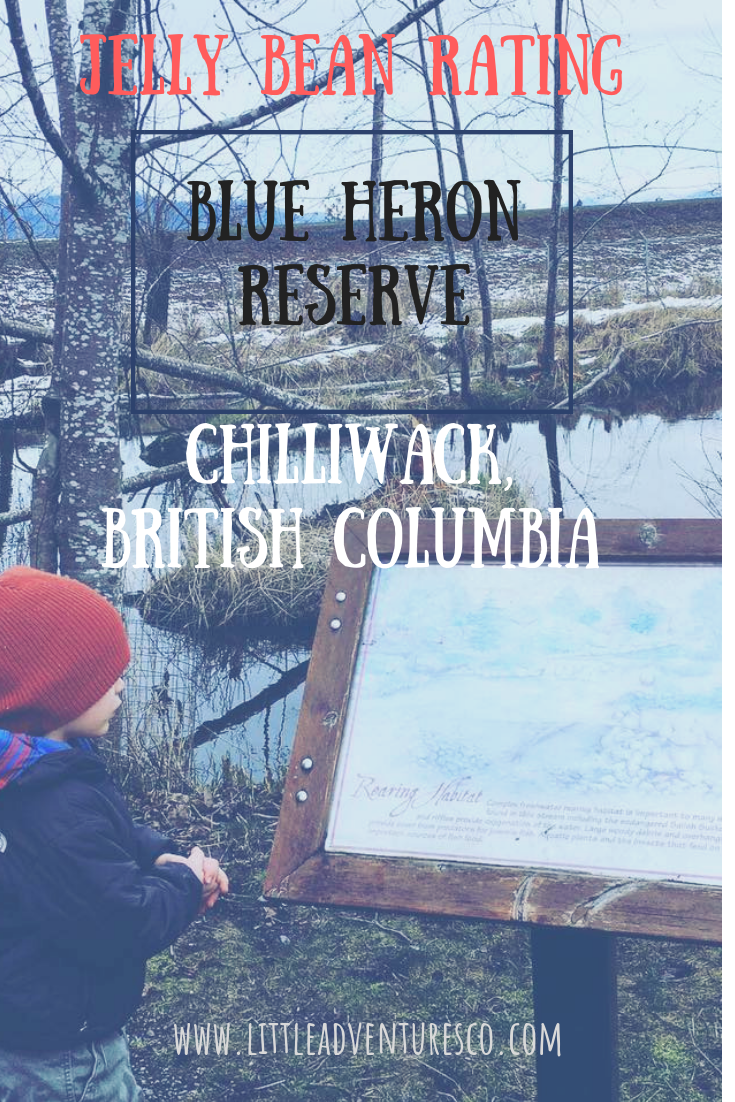 #jellybeanrating #blueheronreserve #chilliwack #sharechilliwack #beautifulbc #fraservalley #blueheron #outdoorliving #outdoorlifestyle #adventure #littleadventuresbigdreams