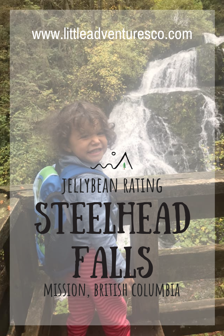 Are you looking for a GREAT waterfall on a kid friendly hike? Steelhead Falls in Mission is beautiful and easy to get to with kids!