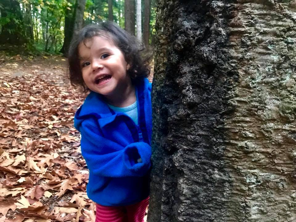 hide and seek at redwood park