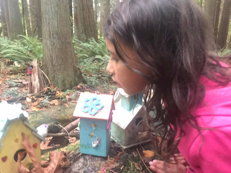 redwood park fairy garden