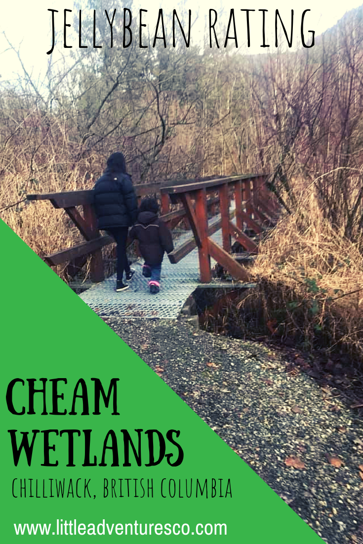 Nestled among the Fraser Valley mountains and Bridal Falls is Cheam Lake Wetlands: a perfect place to pack a picnic and spend the day!
