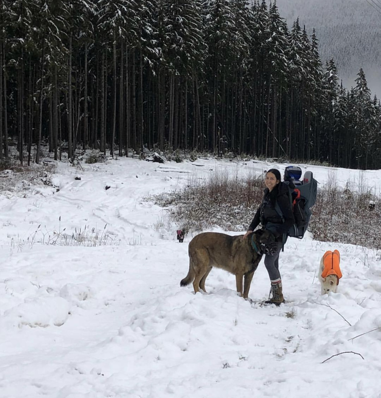 hiking with a kid and dog