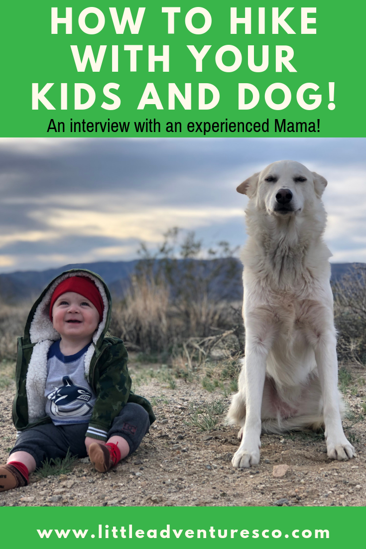 Taking the kids hiking is fun. Taking the dog hiking is fun. Here's how you can do both together!