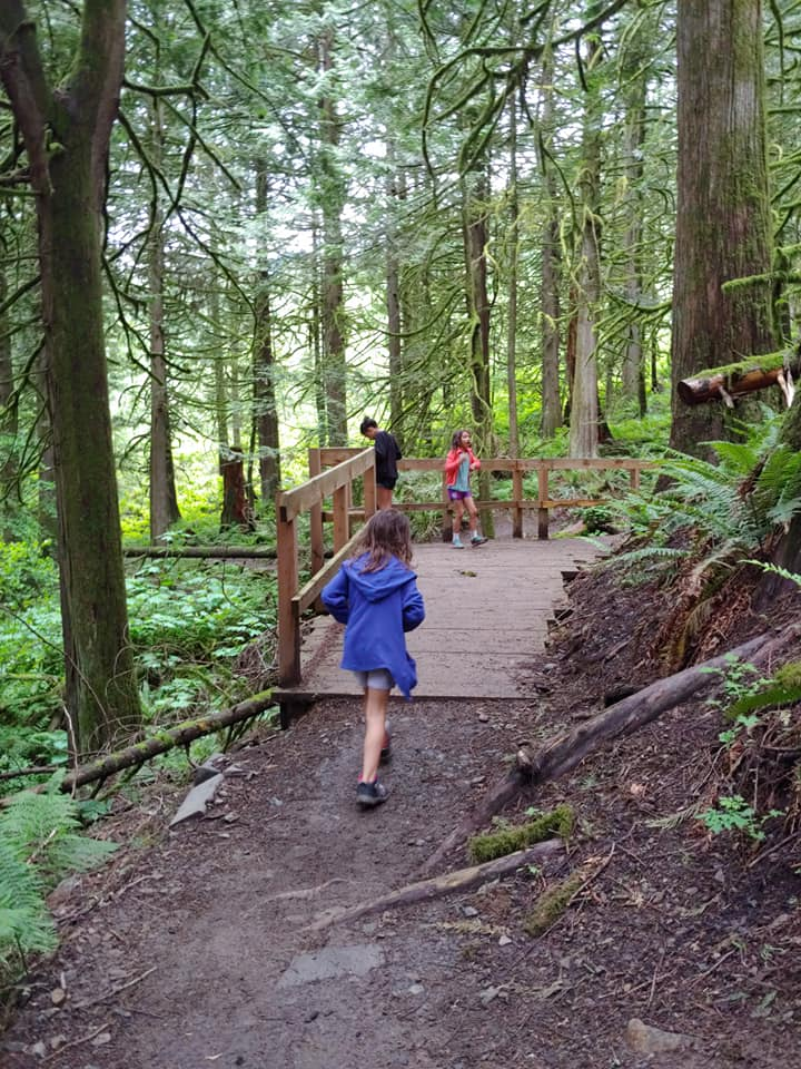 chilliwack community forest