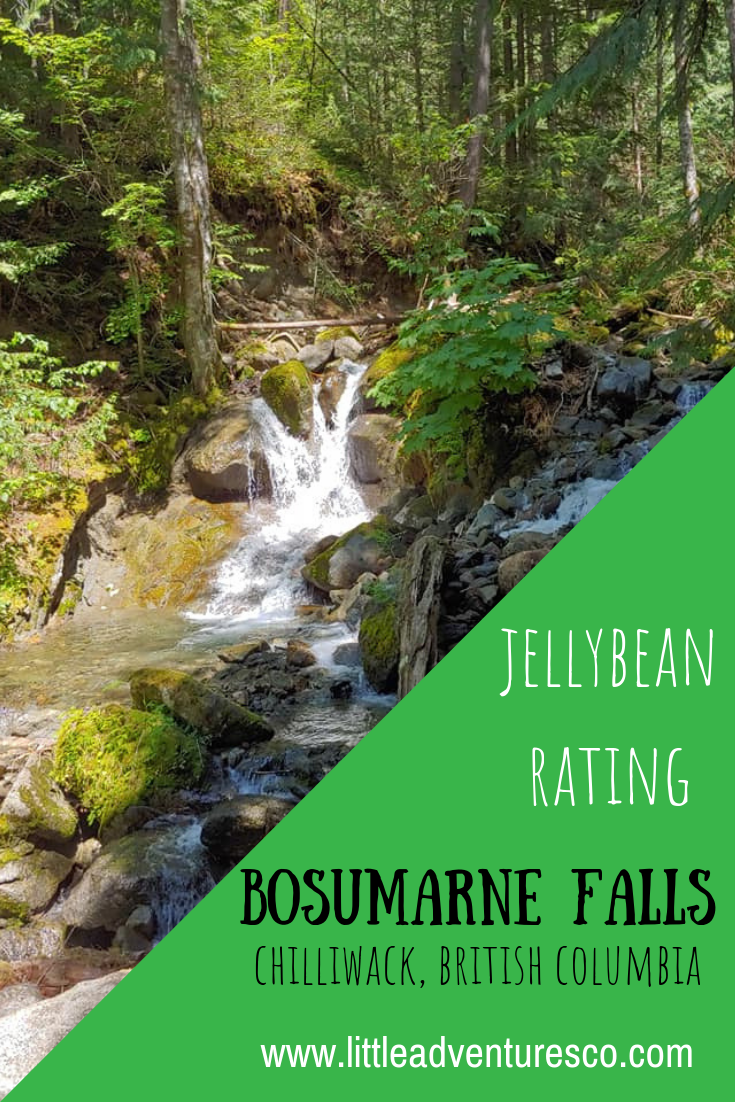 Bosumarne Falls in Chilliwack, British Columbia is a perfect hike for families with kids! It's a short hike with a breathtaking reward!