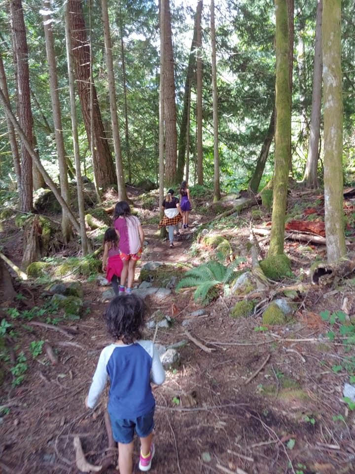 bosumarne falls trail