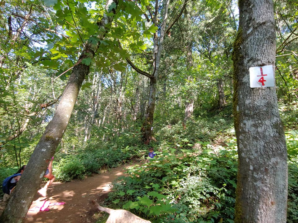 abby grind trail markers