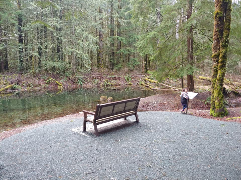 bench at thompson park